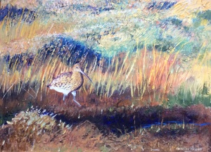 Snipe Acrylic on board 40x30cms